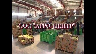 видео Агро-Центр · Шпалера