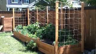Building A Raised Garden Bed - Part 3
