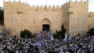 יום ירושלים 2017 Jerusalem day צילום: ארנון בוסאני