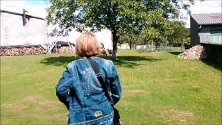 Un Berger dans les rues de les Ancizes-Comps; Paul Rossignol