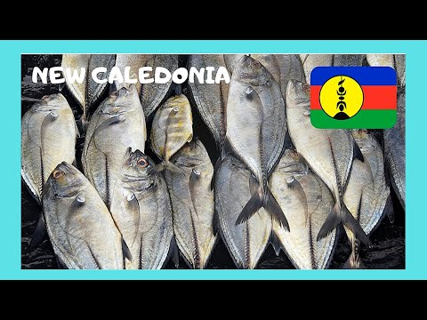 NOUMEA, the FISH MARKET and the delicious fish sold,  NEW CALEDONIA (Pacific Ocean)