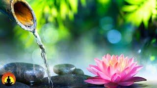 Relaxing Music, Healing Zen Music, Sleep Music, Meditation Music, Reiki