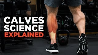 The Most Scientific Way to Train CALVES (Science Explained)