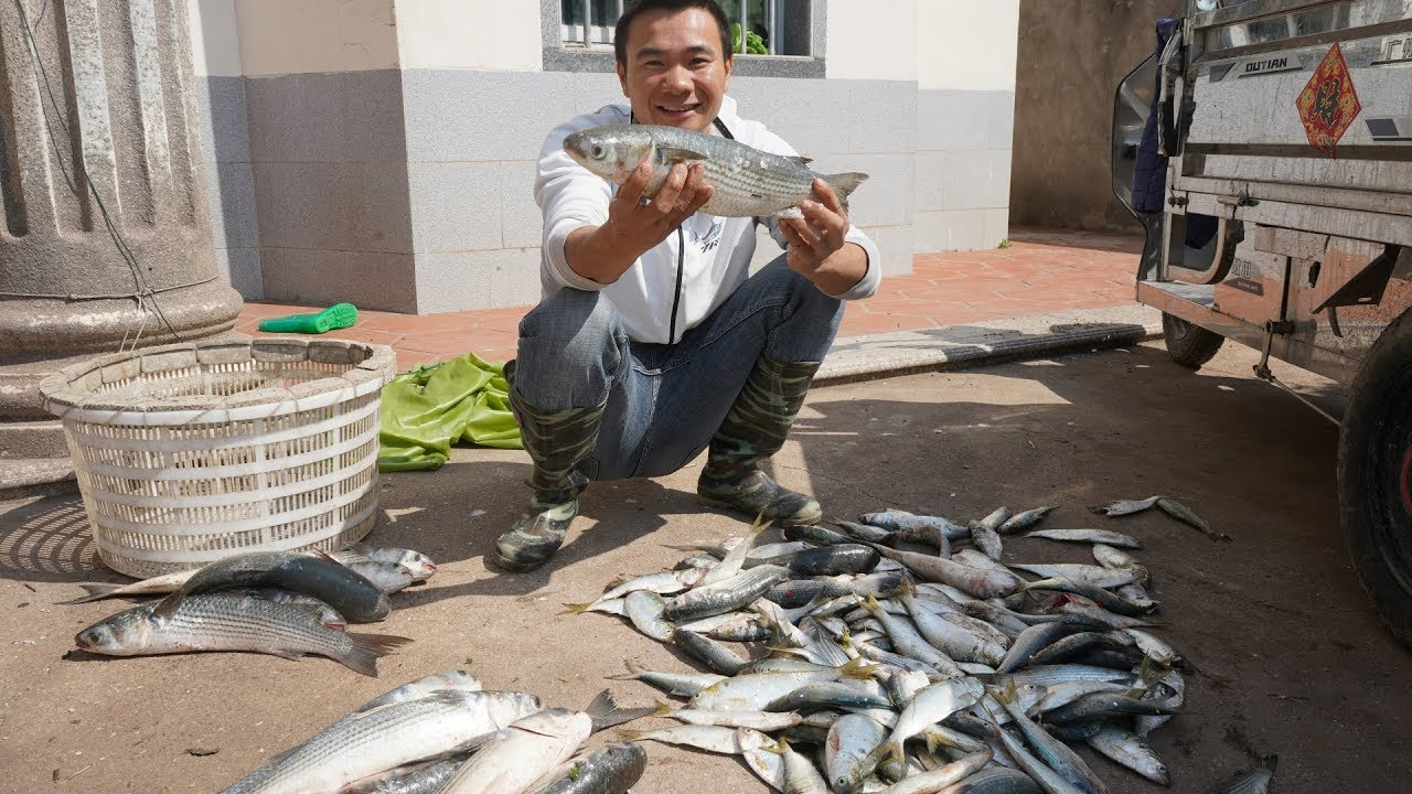 大浪天漁民出海抓不到魚,阿烽想到一種辦法,一晚上抓到四五十斤 - YouTube