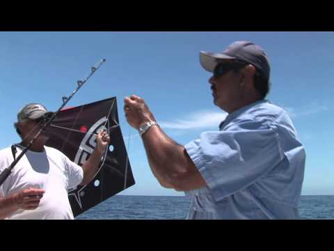 Kite Fishing For Tuna Tutorial In Cabo San Lucas With Pochos Charters