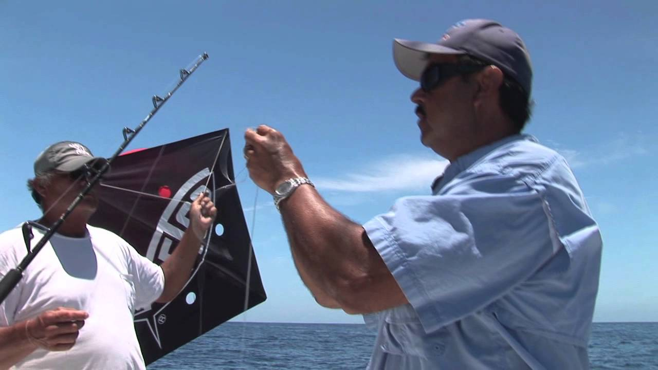 Kite fishing for tuna tutorial in cabo san lucas with for Kite fishing for tuna