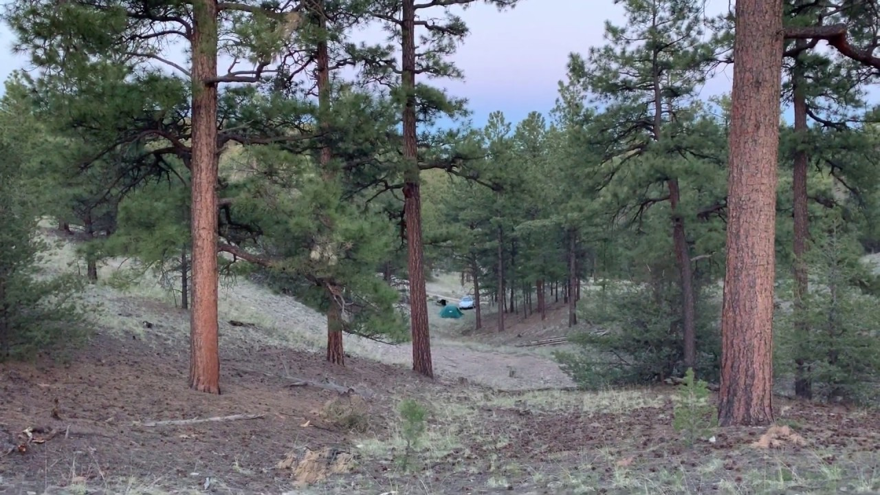 Gila National Forest (New Mexico) Wild Camp Site - YouTube