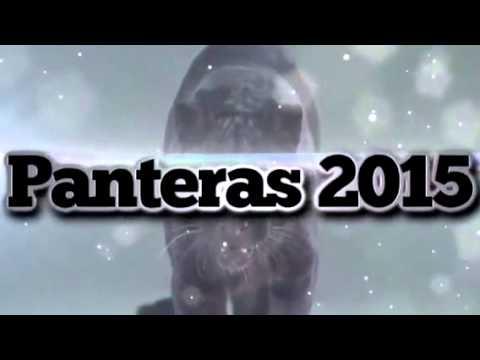 Promocional Fiesta de Bienvenida UVP 2015