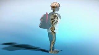видео Школьные ранцы и рюкзаки для первоклассников