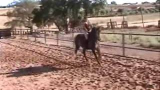 Esther, una clase a caballo.