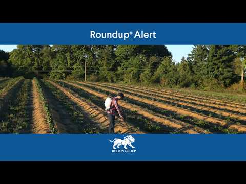 Roundup weed killer is causing blood cancer