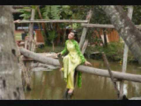 Cay cau dua-- JC Nguyen