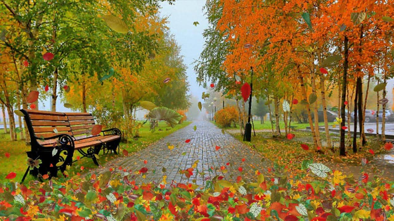 Картинки по запросу картинки осеннего листопада