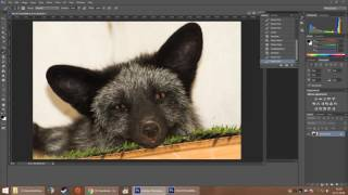 Photoshop Tutorial: Any color eye reduction