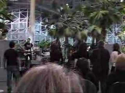 Elevation - Bad (U2 Tribute Band)
