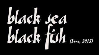 Play Black Sea, Black Fish