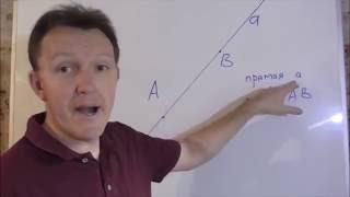 Точка и прямая Геометрия 7 класс