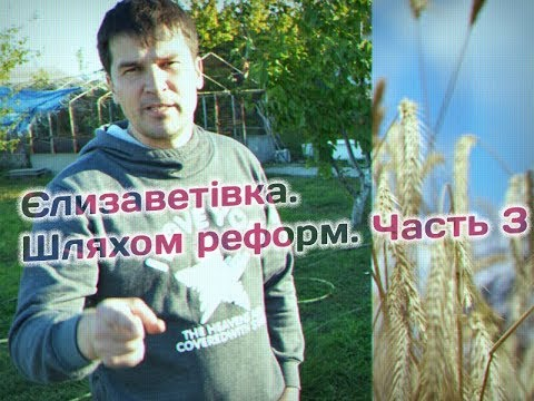 Максим Голосной: About the sabotage of the regional authorities, the failed education reform