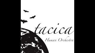 tacica - オオカミと月と深い霧