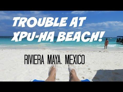 Xpu Ha | Be CAREFUL of these guys when visiting XpuHa Beach!