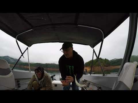 kokanee fishing feb 18 gp