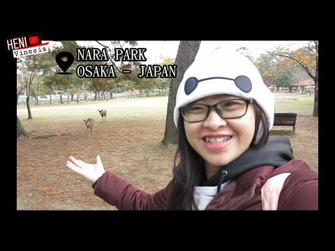osaka-japan-2018-day-2---heni-vlog