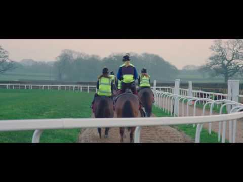 Paul Nicholls' Christmas Runners - Part 1