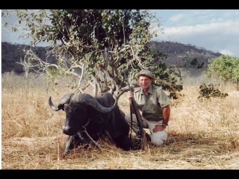 Охота в Африке, соболя и буйволов
