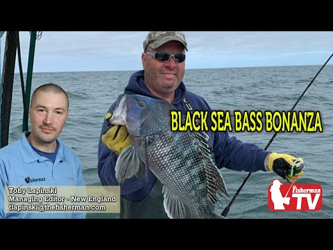 May 28, 2020 New England Fishing Report With Toby Lapinski