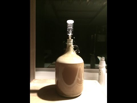 How To Brew Beer 1 Gallon Homebrew Kit
