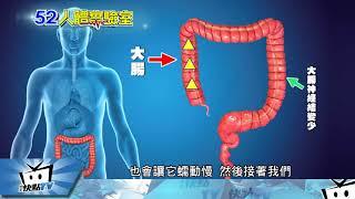 20180112中天新聞 人體實驗室 長期「嗯」不出來 恐是大腸無力症