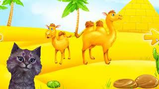 Кошечка Лика Какие животные живут в Пустыне? Как зовут малышей животных?