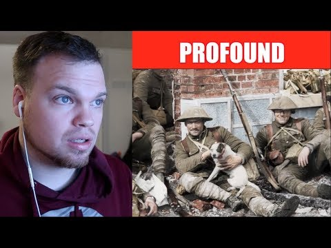 They Shall Not Grow Old Trailer Reaction
