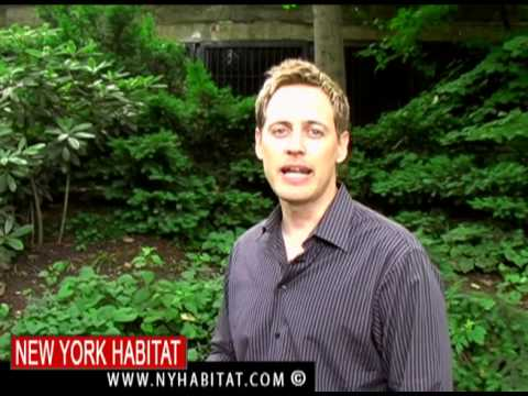 New York City - Central Park Video Tour (Part 1)