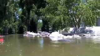 Kayak Trip on Missouri river Bismarck ND During Major Flood of 19.1 Feet 7/2/2011