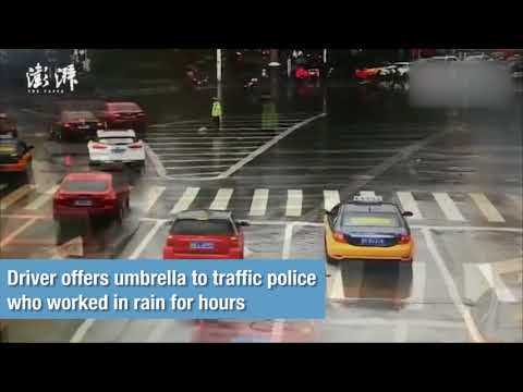 Heartwarming: Driver offers umbrella to traffic police who worked in rain for hours