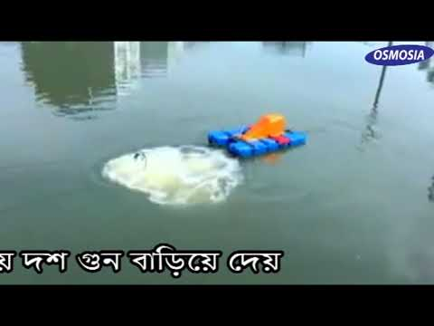 Fish Pond Oxygen Jet Aerator System In Bangladesh, Fish Pond Oxygen Aeration System In Bangladesh