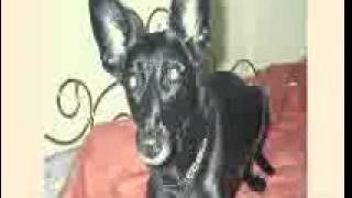 MIX-82 - Amorphous,California,Haldolium, Old Shool 1999 u.v.a. (DJ HELMIC - MIX - 82 - 22.11.2014)