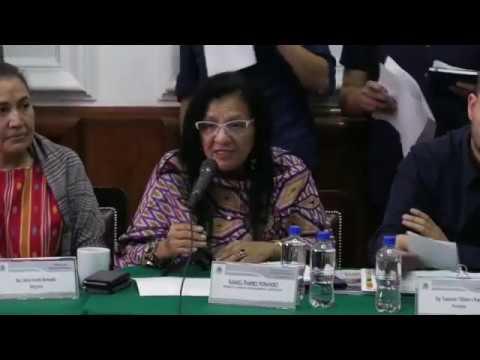 Discurso de la Presidenta de la CDHCM, Nashieli Ramírez, en entrega del Informe Anual 2018