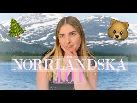 Norrländska 101🐻🌲☀️ + Bilen krockade i vår buss!! |Johanna Lind