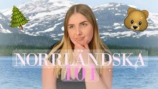 Norrländska 101🐻🌲☀️ + Bilen krockade i vår buss!!  Johanna Lind