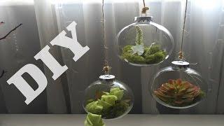 Dollar tree DIY Tear drop terrarium