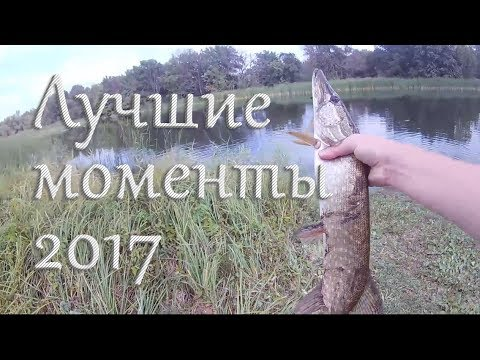 Лучшие моменты 2017 года. Рыбалка в Тамбовской области