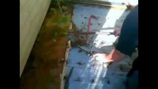 Rebuilding Wood Stairs Front Steps Repair Outdoor Porch Deck Treads