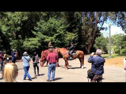 War Horse's Joey in Golden Gate Park