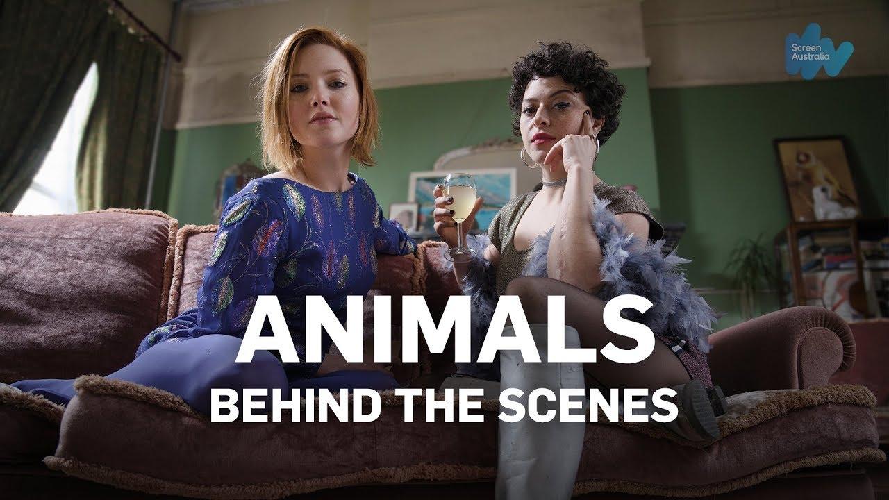 Animals - Behind The Scenes