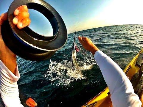 Florida kayak fishing sailfish on a handline youtube for Handline fishing reel