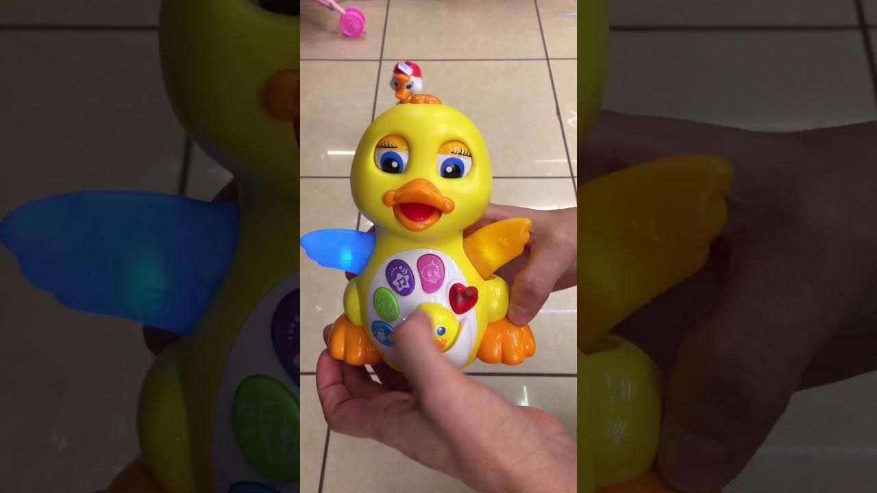Jucărie terrier vedere