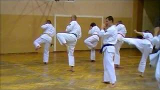 Karate Kyokushin Pawłowice - Trening Dorośli