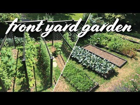 My Front Yard Vegetable Garden Layout | Summer Tour
